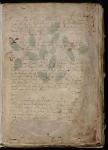 435px-voynich_manuscript_3
