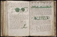 Voynich_Manuscript_03