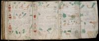 Voynich_Manuscript_05