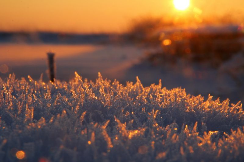 Снег и эскимосы