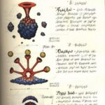 Codex Seraphinianus. Наука 1