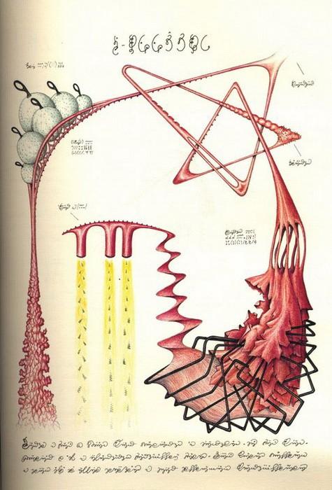Codex Seraphinianus. Наука 4